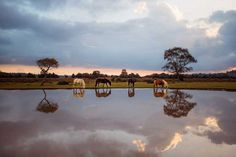 Stunning Finalists of National Geographic Traveller UK 2017 Awards