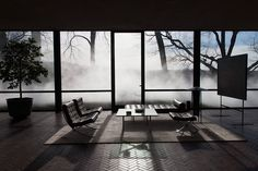 the glass house presents fujiko nakaya: veil #glass #house