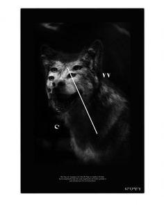innenseite2_vortrag.jpg 1.277×1.600 Pixel #white #black #wolf #poster #steppenwolf