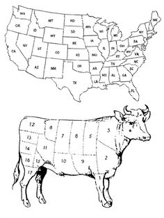 Americow | Dan Bina #america #cow #beef #sections #states #usa #ink #drawing #art #dan bina