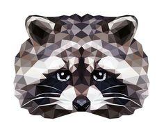RACCOON — Geometric vector animals