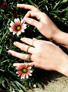 Californication: Modeshooting in L.A. #photo #jewelry #hands #fashion #flowers