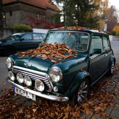GtheGentleman #mini