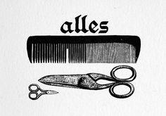 Miss Moss : alles #illustration