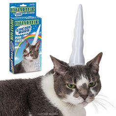 Inflatable Unicorn Horn for Cats - Archie McPhee - 1