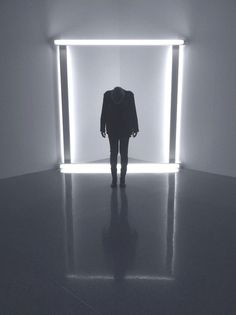 Dan Flavin exhibition, Vienna 2012/13 #strobes #neon #lights #dan #photography #flavin