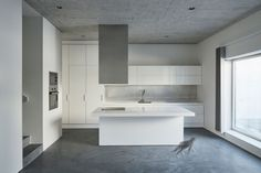 House for an Artist by extrastudio