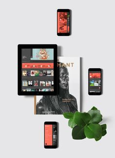 Issuu_section01_grey #ux #ipad #interface #ui #digital #ios