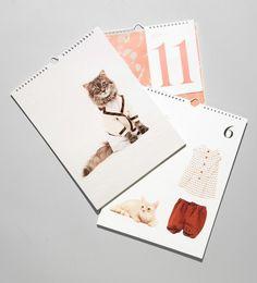 Studio Lin #kitten #calendar #opening #ceremony #cats #spring