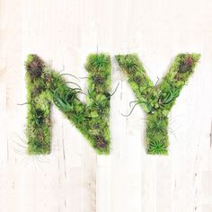 """NY"" Garden #hashtaggarden #artweheart #sculpture #art #succulents #airplants #moss #green #newyork #ny #gifts"