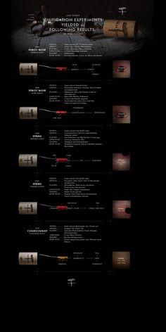 CORKSCREW_10_4_WINES #corkscrew #lewis #wine