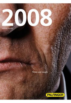 Palfinger annual report 2008 on the Behance Network