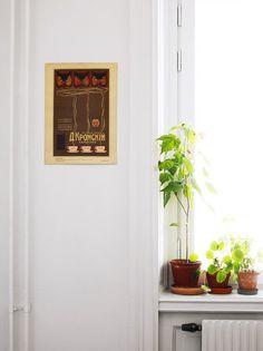 amanda rodriguez styling plants #interior #design #decor #deco #decoration