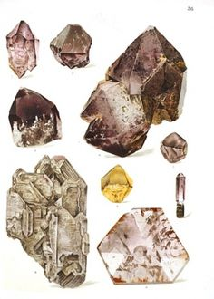 A Collection of Minerals and Gems