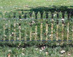 A Fence of Mirrors Reflects the Changing Landscape #fence #mirrors #yard #grass