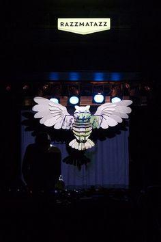 maumorgo #owl #installation