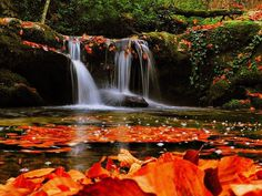Autumn, waterfall #waterfall