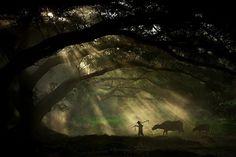 Spectacular Shortlist: Sony's World Photography Awards (15 photos) - My Modern Metropolis #photography #light