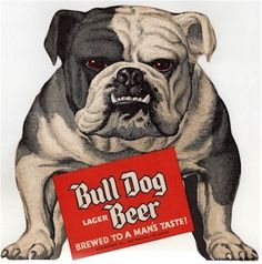 Pinned Image #beer #illustration #bulldog