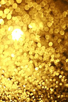 gold #photography #golden #gold