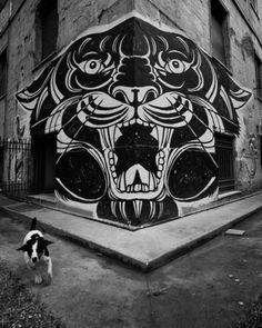 Lover & Scorpio #old #school #lion #agressive #illustration #panther #street #tiger