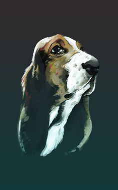 Dog #sears #hound #illustration #portrait #painting #animal #dog
