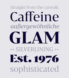 Bw Darius - Fonts - Branding with Type