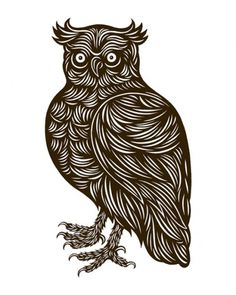 Google Reader (825) #owls