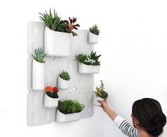 Urbio Vertical Garden - TheDieline.com - Package Design Blog #garden #spots #plants #green