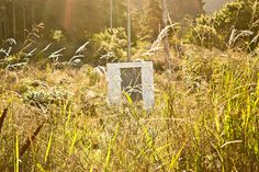 Little House #house #little #photography #nature #isolation