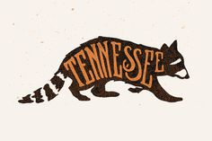 Random Lettering Projects / 2013 on Behance by Joshua Noom #raccoon #tennessee #illustration #drawn #hand #typography