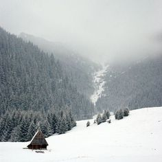 Paweł Kopocz #cabin #wood #photography #mountains