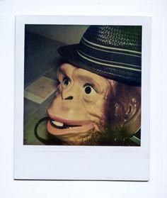 Mathieu Bories Portfolio #photo #polaroid #balloon #vintage #monket