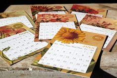 Snail's Pace 2011 Desk Calendars #2011 #calendar #pace #desk #snais #stationery #paper