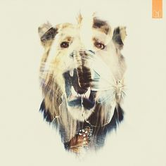 In Freaks We Trust - ONLINE GALLERY - Dan Mountford:Â Art #abstract #greyscale #nature #creatures #animals #bear