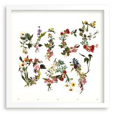 Francesc Moret #print #type #flowers
