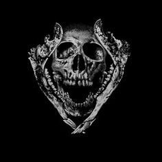 Jawz #skull #jawz #art #illustration