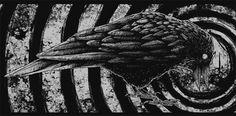 SerialThriller™ #illustration #crow