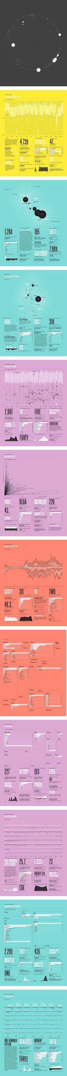 Nicholas Felton #infographic #data