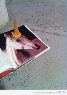 9GAG - Unicone #fun #photography #unicorn