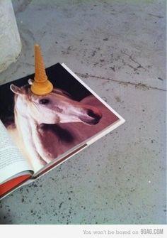 9GAG - Unicone #fun #photography #unicorn