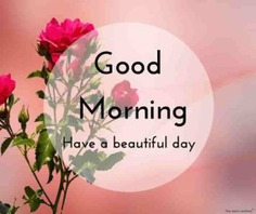 Beautiful Good Morning Images [ Best Collection ] - ,good morning images,good morning images awesome,good morning images cute,good morning images hd,good morning images in hindi,good morning images inspiration,good morning images new,good morning images photography,good morning images romantic