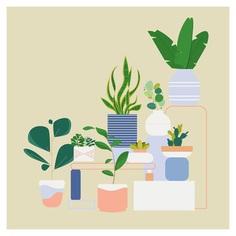 Illustrations by Naomi Bensen (6)