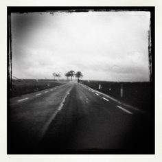 Sans Titre, photography by Sylvain Lagarde #road #tree