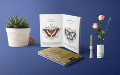 Jim's Jungle Retreat - Butterfly Brochure on Behance