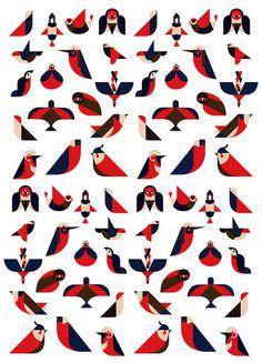 Argijale - Illo Zoo - the illustration agency #birds #illustration