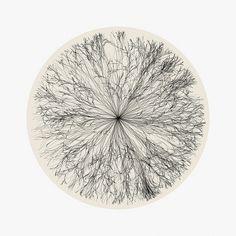 6675781555_3b00aae830_z.jpg 640×640 píxeles #abstract #eye