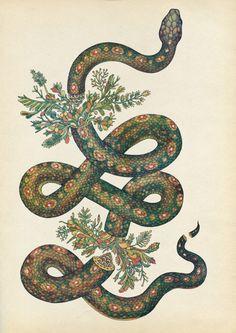 Designersgotoheaven.com   Snake.(viakatie scott)