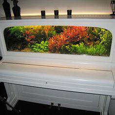 Piano Turned Into An Aquarium #interior #piano #design #decor #aquarium #deco #decoration