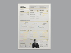 Free Infographic Resume Template with Stylish Design